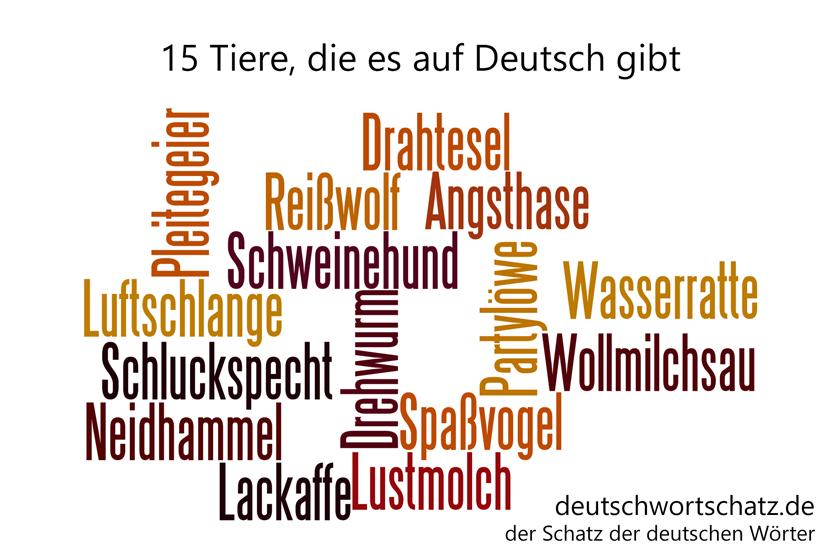 15 tiere auf deutsch deutschwortschatz schatz der. Black Bedroom Furniture Sets. Home Design Ideas