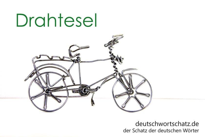 Drahtesel - die schönsten deutschen Wörter- Tiere auf Deutsch