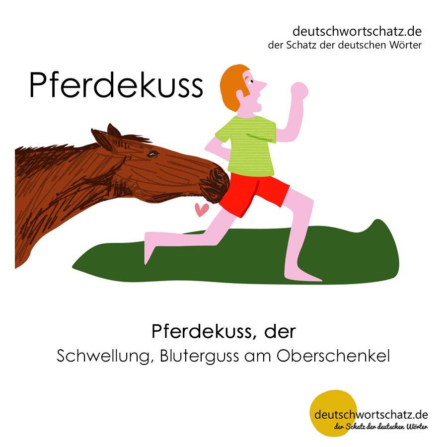 Pferdekuss - Wortschatz mit Bildern lernen - Deutsch lernen