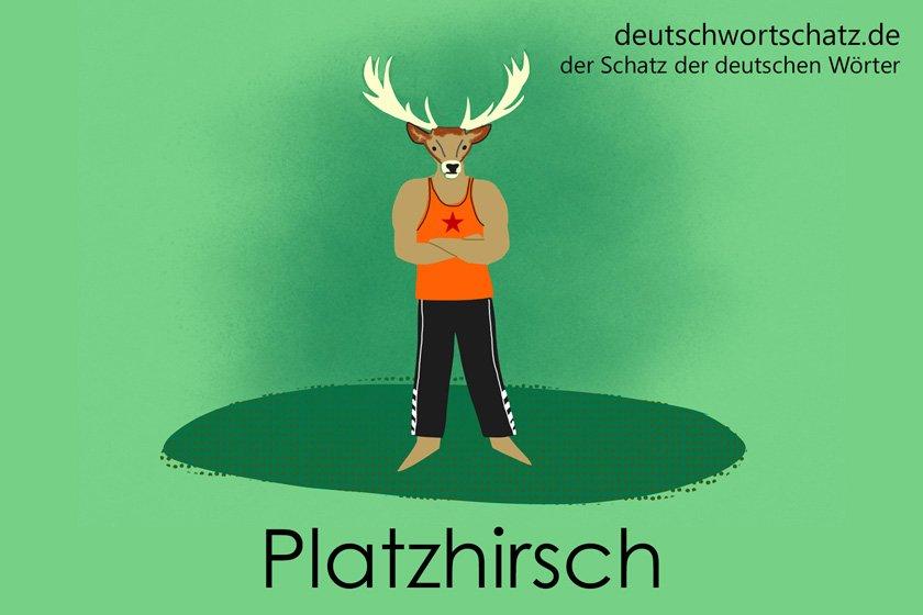 Platzhirsch - Alphatier