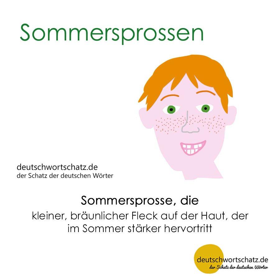 Sommersprossen - Wortschatz mit Bildern lernen - Deutsch lernen