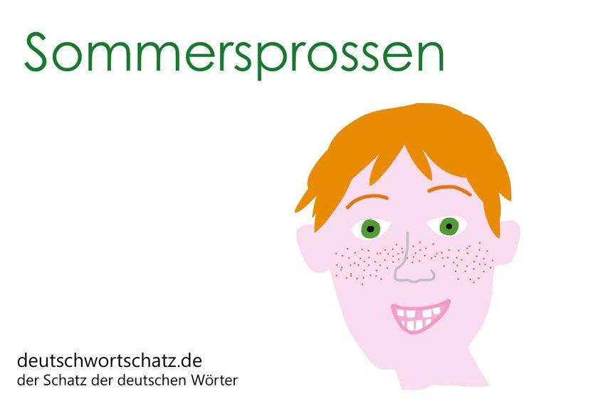 Sommersprossen - die schönsten deutschen Wörter