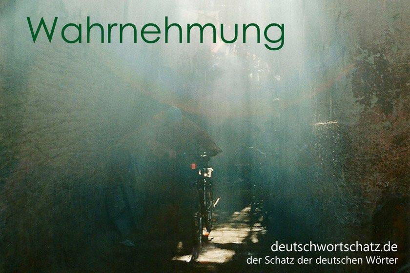 Wahrnehmung - die schönsten deutschen Wörter - Deutsch Wortschatz