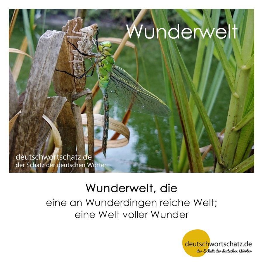 Wunderwelt - Wortschatz mit Bildern lernen - Deutsch lernen