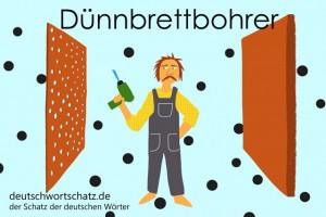 Dünnbrettbohrer - Deutsch Wortschatz - Wortschatzbilder