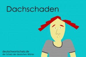 Dachschaden - Deutsch Wortschatz - Wortschatzbilder
