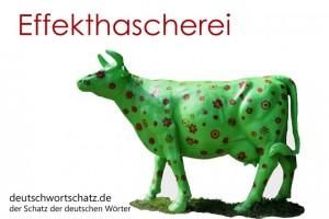 Effekthascherei - Deutsch Wortschatz - Wortschatzbilder