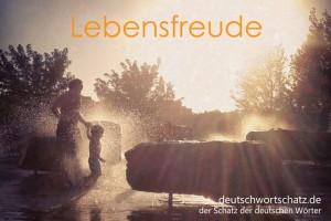 Lebensfreude - Deutsch Wortschatz - Wortschatzbilder