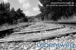 Lebensweg - Deutsch Wortschatz - Wortschatzbilder