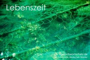 Lebenszeit - Deutsch Wortschatz - Wortschatzbilder
