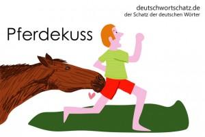 Pferdekuss - Deutsch Wortschatz - Wortschatzbilder