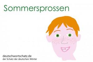 Sommersprossen - Deutsch Wortschatz - Wortschatzbilder