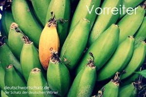Vorreiter - Deutsch Wortschatz - Wortschatzbilder