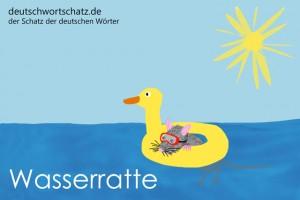 Wasserratte - Deutsch Wortschatz - Wortschatzbilder