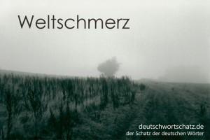 Weltschmerz - Deutsch Wortschatz - Wortschatzbilder