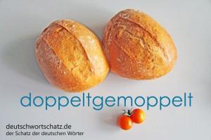 doppeltgemoppelt - Deutsch Wortschatz - Wortschatzbilder