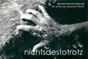 nichtdestotrotz - Deutsch Wortschatz - Wortschatzbilder