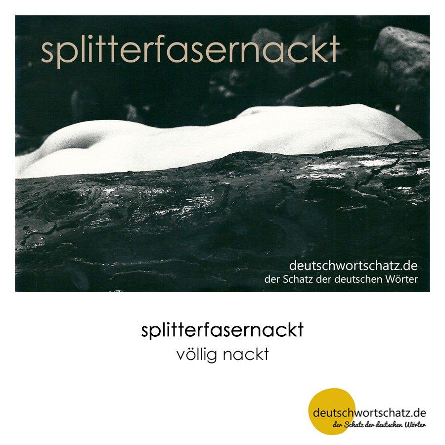 splitterfasernackt - Wortschatz mit Bildern lernen - Deutsch lernen