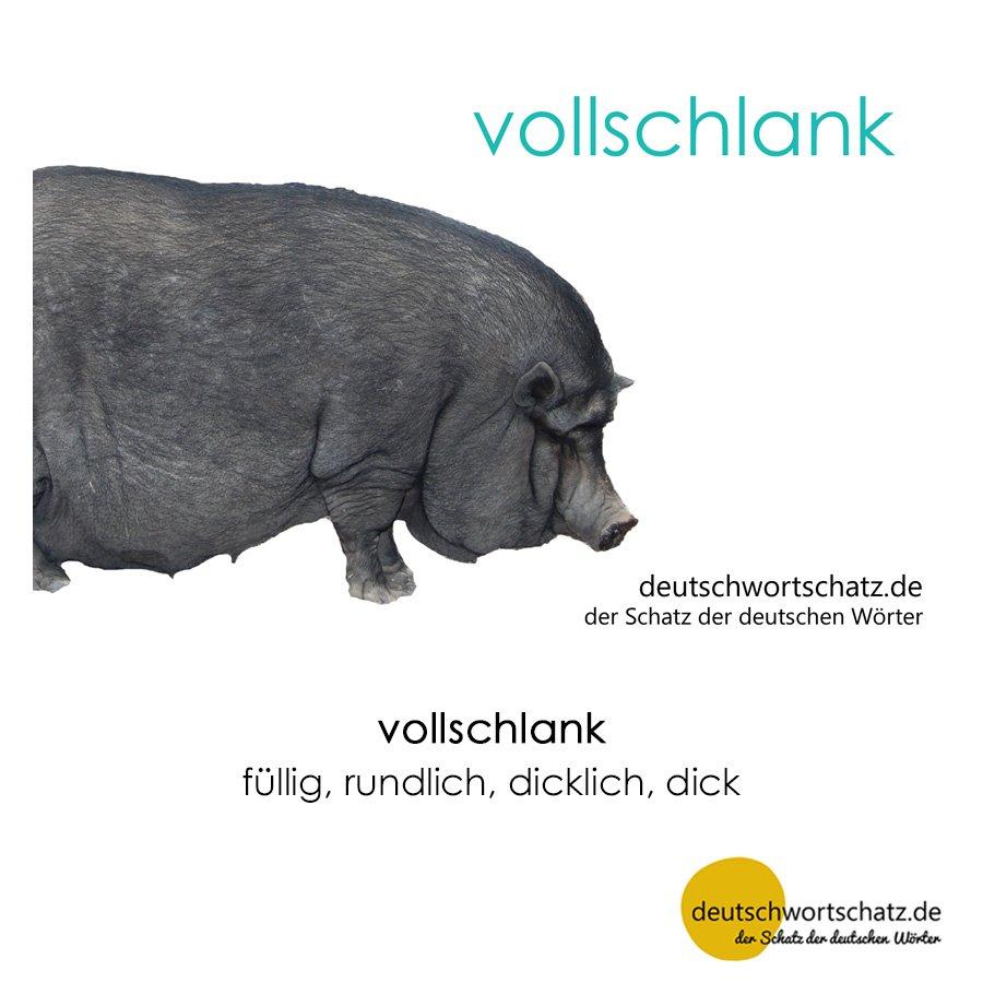 vollschlank - Wortschatz mit Bildern lernen - Deutsch lernen
